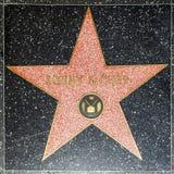 Sonny & Chers stjärna på Hollywood Arkivbild