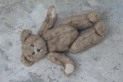 Sono bonito do urso de peluche Fotos de Stock