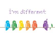 Sono differente. La famiglia degli uccelli in arcobaleno colora la seduta ed il canto su un ramo di albero. Fotografia Stock