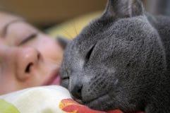 Sono do gato e da menina Foto de Stock Royalty Free