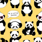 Sono un piccolo panda Fotografia Stock