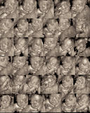 Sonogram tridimensional Imagens de Stock Royalty Free