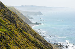 Sonoma Coast State Beach. Waves coast Royalty Free Stock Photo