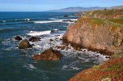 Sonoma County seglar utmed kusten Bodegafjärden CA royaltyfri fotografi
