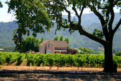 Sonoma e Napa Valley, Califórnia Fotografia de Stock Royalty Free
