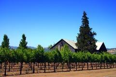 Sonoma en Napa Vallei, Californië stock foto's