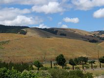 Sonoma Hill Side. Scenic shot of Sonoma Valley, California royalty free stock photo
