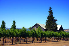 Sonoma and Napa Valley, California Stock Photos
