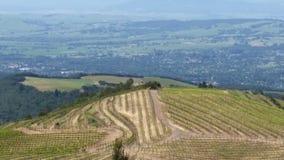 Sonoma okręgu administracyjnego winogrona widoki Fotografia Royalty Free