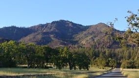 Sonoma-Vallei CA de V.S. stock fotografie