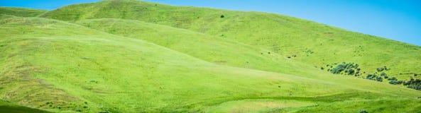 Sonoma-valleilandschappen op een zonnige dag stock afbeeldingen