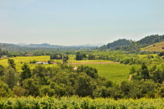 Sonoma Valley Ca. Elevated view down Sonoma Valley Ca - vineyards Royalty Free Stock Image