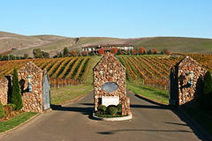 Sonoma Vineyard Entrance. The entrance gate into a Sonoma Valley, California vineyard Stock Photo