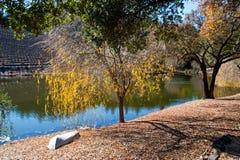 Sonoma vineyard. Vineyard and pond in Sonoma CA Royalty Free Stock Photo