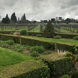 Sonoma winery. Grey skies over a sonoma winery Royalty Free Stock Photography