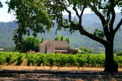 Sonoma y Napa Valley, California Fotografía de archivo libre de regalías