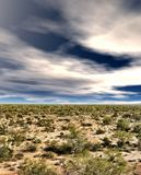 Sonoraöken Arizona Royaltyfria Foton