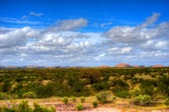 Sonora Desert Arizona. The Sonora desert in central Arizona USA Stock Image