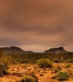 Sonora Desert Arizona Royalty Free Stock Photography