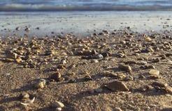 Sonora desert beach Stock Photo