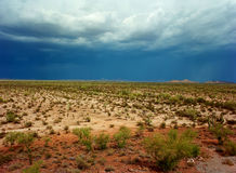 Sonora Desert. In central Arizona USA Stock Images