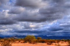 Sonora Desert. The Sonora desert in central Arizona USA Royalty Free Stock Photo