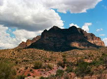 Sonora Desert. The Sonora desert in central Arizona USA Royalty Free Stock Photos
