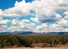 Sonora Desert. The Sonora desert in central Arizona USA Stock Photo