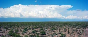 Sonora Desert. The Sonora desert in central Arizona USA Royalty Free Stock Photo