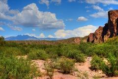 Sonora Desert. The Sonora desert in central Arizona USA Stock Image