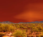 Sonora Desert. The Sonora desert in central Arizona USA Royalty Free Stock Image