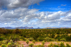 Sonora Desert. The Sonora desert in central Arizona USA Stock Images