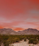 Sonora Desert. The Sonora desert in central Arizona USA Royalty Free Stock Photography