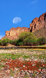 Sonora Desert Gibbous Moon. Gibbous moon over the southwestern USA Sonora desert and mountains Stock Image
