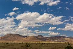 The Sonora desert in Mexico Royalty Free Stock Photo