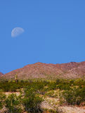 Sonora Desert Moon. Half moon over the southwestern USA Sonora desert and mountains Stock Photography