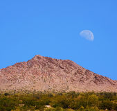 Sonora Desert Moon Royalty Free Stock Images