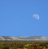 Sonora Desert moon. Moon rising Sonora desert in central Arizona USA Royalty Free Stock Images