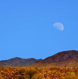 Sonora Desert moon Royalty Free Stock Photography