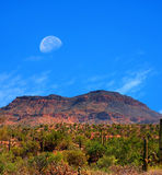 Sonora Desert moon. Moon rising Sonora desert in central Arizona USA Stock Photo