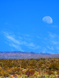 Sonora Desert moon. Moon rising Sonora desert in central Arizona USA Royalty Free Stock Image