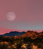 Sonora Desert Moon. Moon rising Sonora desert in central Arizona USA Royalty Free Stock Photography