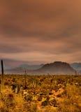 Sonora Desert Mountains Royalty Free Stock Photo