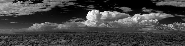 Sonora Desert Panorama. Panorama Sonora desert in central Arizona USA royalty free stock photo