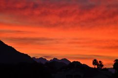Sonora Desert Sunrise #2. Sunrise in the Sonoran Desert, outside of Scottsdale, Arizona Stock Photo