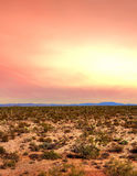Sonora Desert Sunset. Sunset Sonora desert in central Arizona USA Royalty Free Stock Images