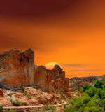 Sonora Desert Sunset Royalty Free Stock Images