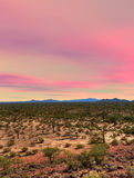 Sonora Desert Sunset. Sunset Sonora desert in central Arizona USA Stock Photography