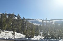 Sonora Pass Completely Snowy With Some Impressive Views Of Yosemite National Park. Nature Travel Holidays. stock image