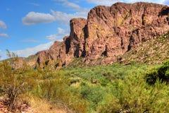 Sonora pustynia Zdjęcie Royalty Free